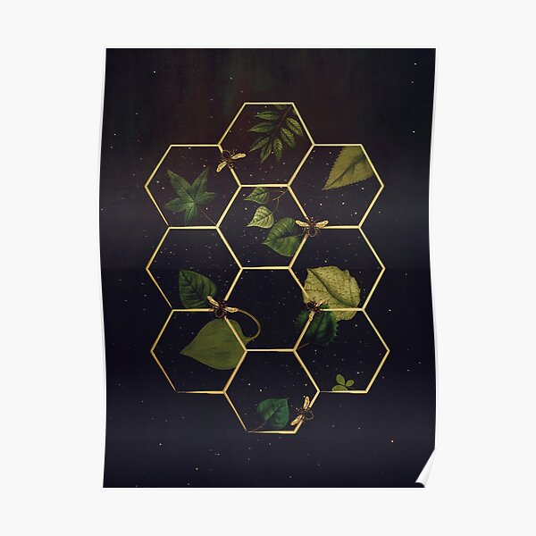 Bees in Space  Poster