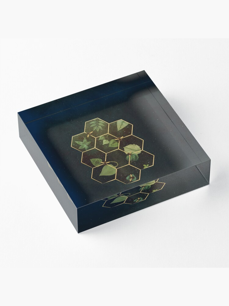 Alternate view of Bees in Space  Acrylic Block