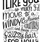 I like you so much I'd have frizzy hair for you - Calligraphic hand written quote by Miruna Illustration