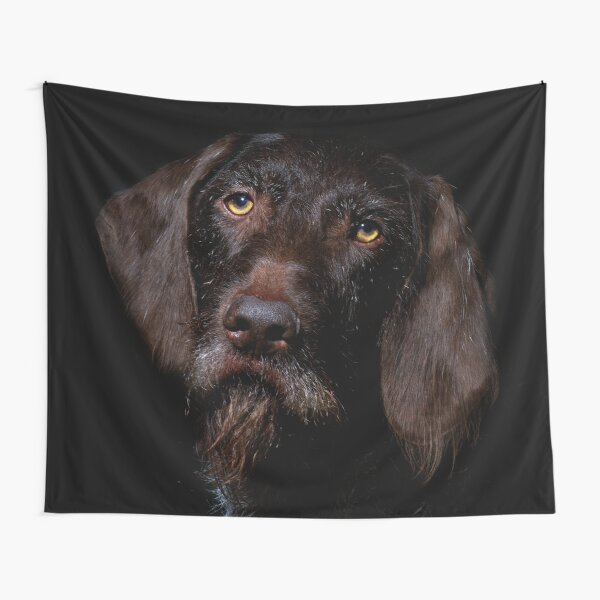 German Wirehaired Pointer Portrait Tapestry