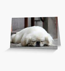 Sleepy Snobby Doggy Greeting Card