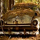 Old Rusty Ford In The Woods by georgiaart1974
