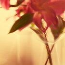 Flowers by Paul Scrafton
