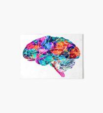 Lámina de exposición Cerebro de colores