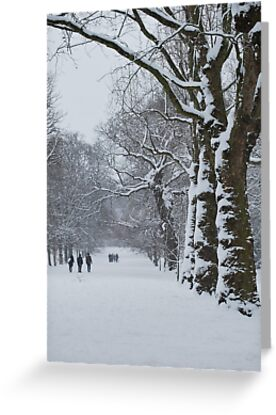 Greenwich Park 1 by KarenM