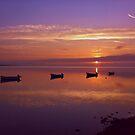 Sunset at the Estuary by Martina Fagan
