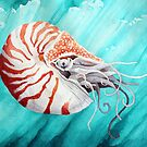 Chambered nautilus by Watercolor Naturalist