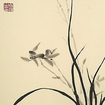 Chinese Orchid by BirgitMo