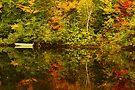 couleurs et lumiere 01 by Aimelle