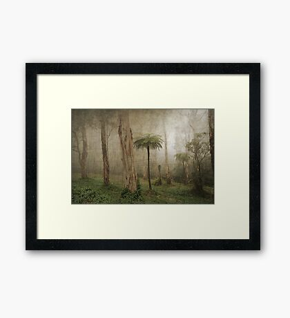 The Manfern Framed Print