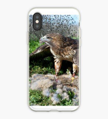 Griffon 3 iPhone Case