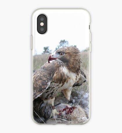 Griffon 4 iPhone Case