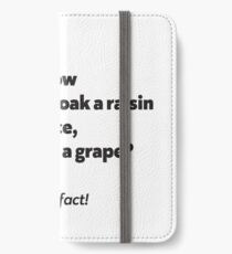 It's a rock fact! #1 iPhone Wallet/Case/Skin