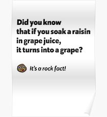 It's a rock fact! #1 Poster
