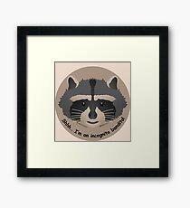 Baby Raccoon Shh - bandito incognito Framed Print