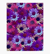 Purple Flower Collage Photographic Print
