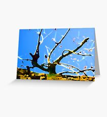 Branch Out Greeting Card