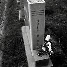 Holy Bible Tombstone Black&White by TLWhite