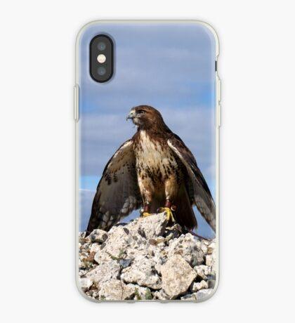 Griffon 14 iPhone Case