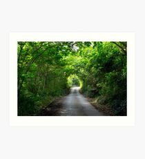 Chalky Mount, Barbados Art Print