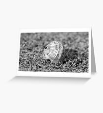 Crab Shell, Secret Harbour Greeting Card