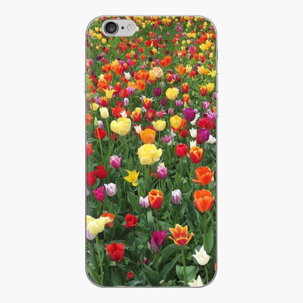 Spring in Sweden iPhone Skin