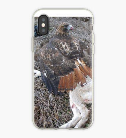 Griffon 19 iPhone Case
