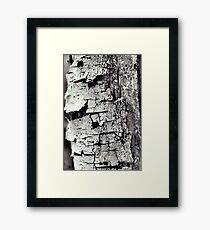 The Bark Framed Print