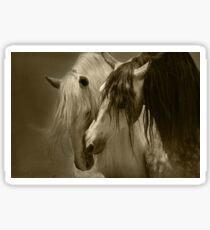 The beauty of the Horse.  Sticker