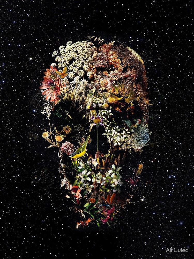Cráneo de Smyrna de aligulec