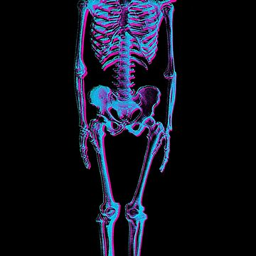 Skeleton with Anaglyph 3D Stereoscopic Effect by ddtk