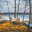 Rowboats napping by alan shapiro