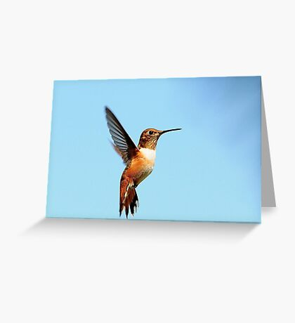 FREEDOM~ Greeting Card