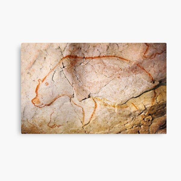 Chauvet Cave Bear 3 Lienzo