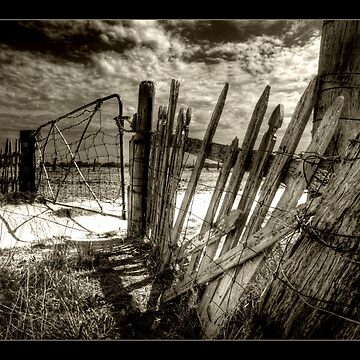 Fence by Wulff