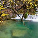 Autumn in Croatia by Luka Skracic