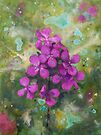 Lunaria by Maria Meester