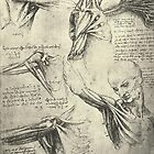 Anatomical drawing by Leonardo Da Vinci of a Man's neck and shoulders.  Circa 1510 by artfromthepast