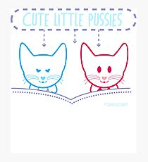 Cute Little Pussies  Photographic Print