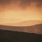 Coquet valley evening by Angi Wallace