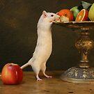 curious rat by dagmar luhring