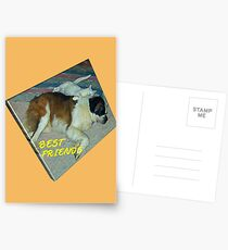 Best Friends Postcards