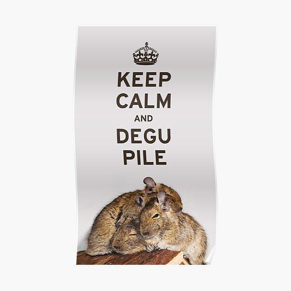 Keep Calm and Degu Pile Poster