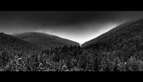 Untitled by Vedran Arnautovic