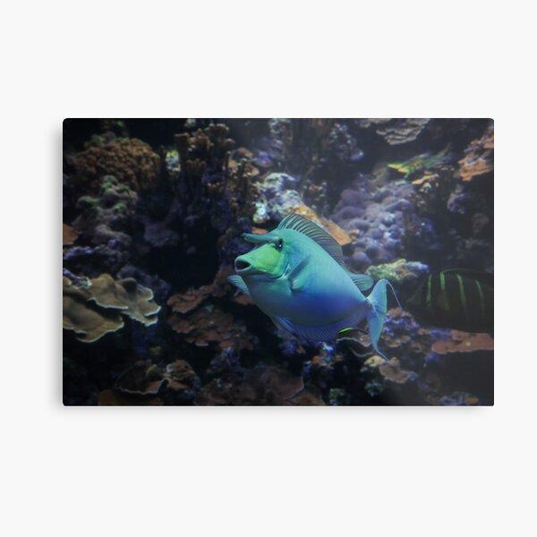 Deep Blue Unicorn Metal Print