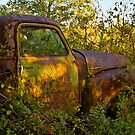 Old Rusty Lumber Truck by georgiaart1974