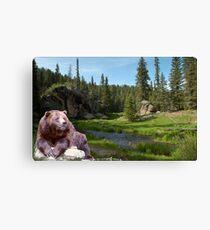 1121-Bear Country Creek Canvas Print