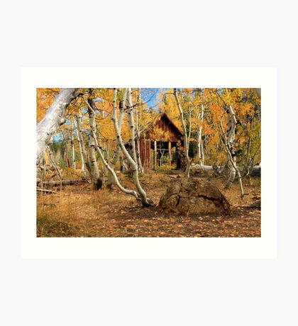 Old Cabin In The Aspens Art Print