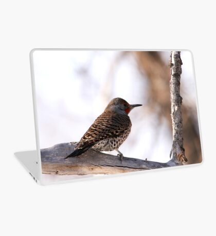 Northern Flicker Laptop Skin