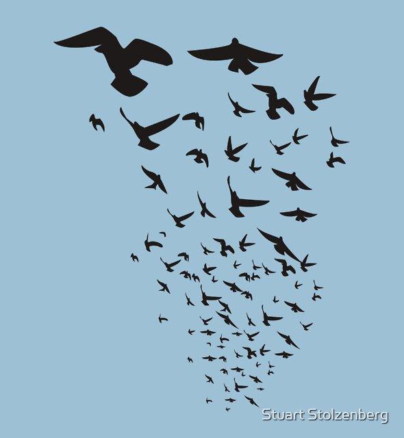The Birds by Stuart Stolzenberg